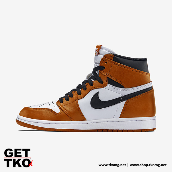 air-jordan-1-shattered-backboard-2-0-03