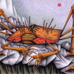 "Illustrations of ""Crab, Crustacean, Monster, Alien, Rocky field"""