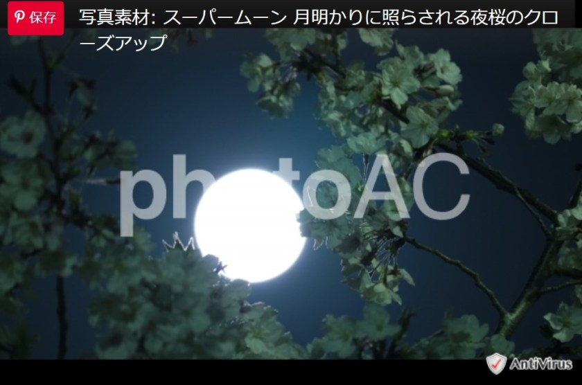 夜桜とスーパームーンの写真