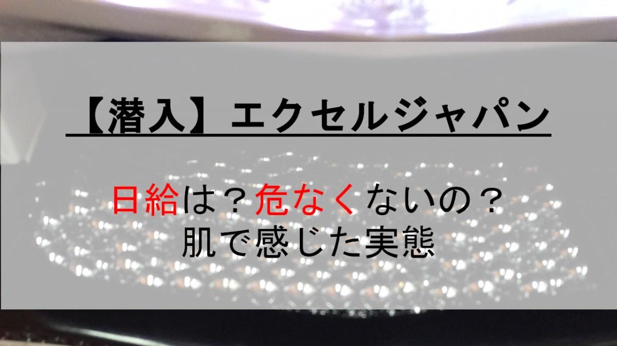 ジャパン エクセル
