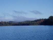 Fall Fog Over the Maple Bush