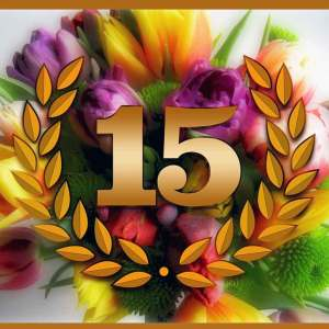 15-tremendous-years-our-aniversery