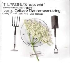 eetbare planten vierkant