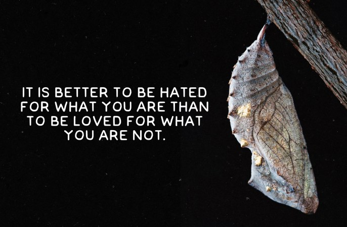 Hated for what you are, breathtaking inspirational book quotes