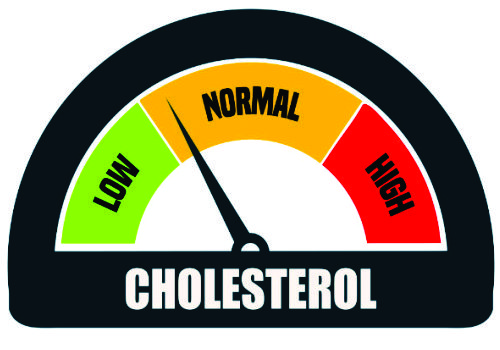 How to control your Cholesterol