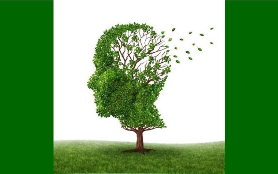 Speaker Series: Alzheimer's Presentation