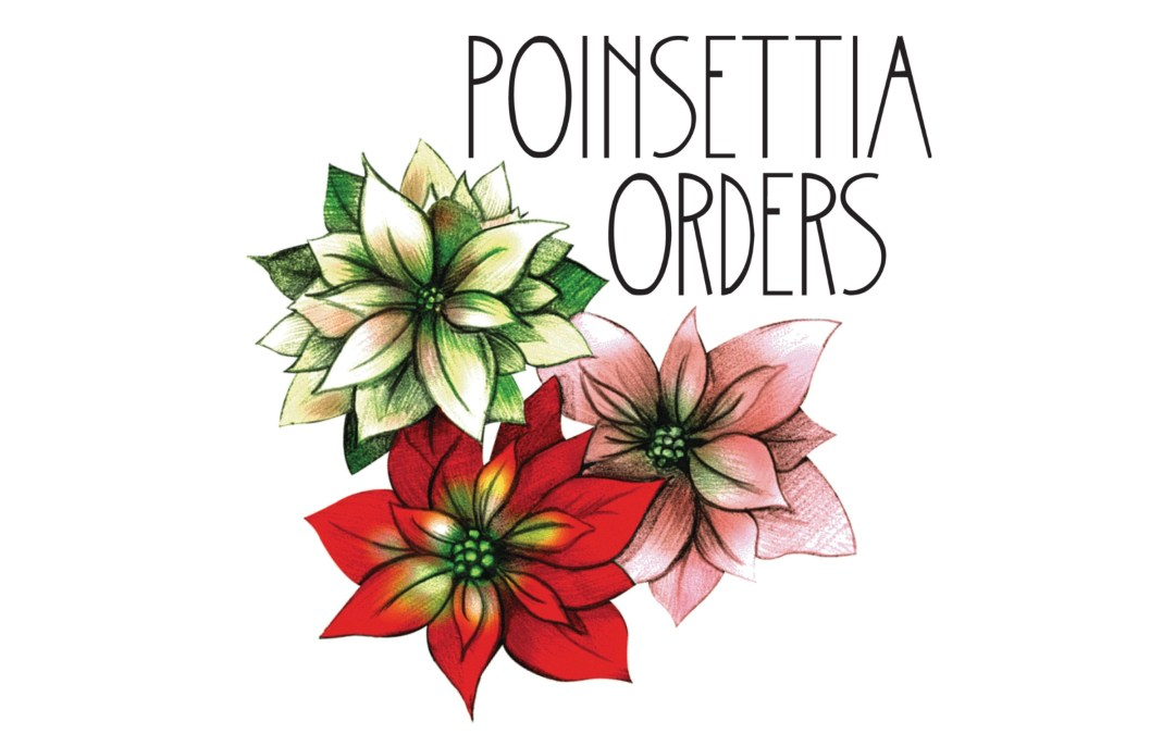 Poinsettia Orders for Mission Campus