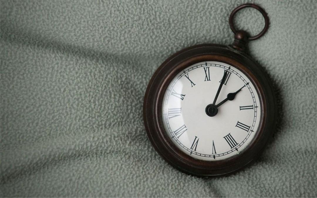 The Living Time Capsule – Seeking Ideas