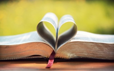 Bible Studies, Groups, and Experiences for Adults