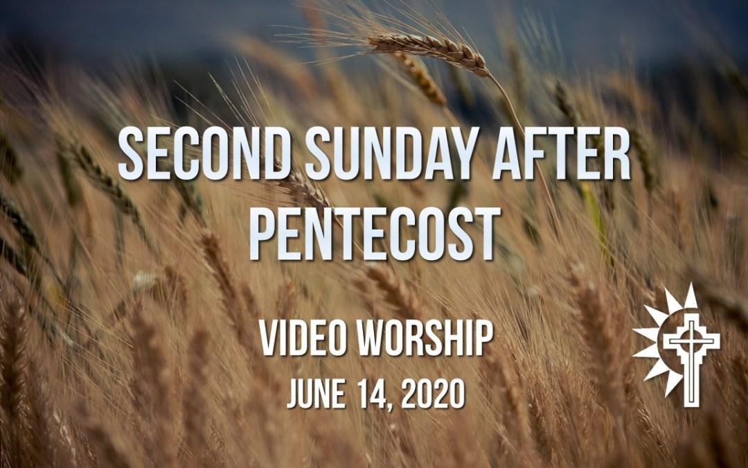 Sunday Worship – June 14