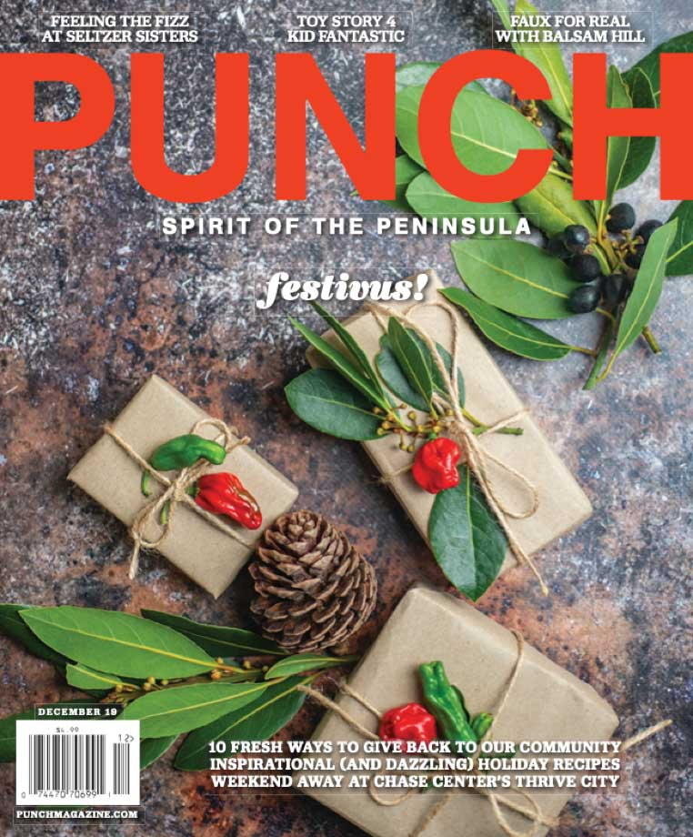 <h4>Punch</h4> VIEW ARTICLE