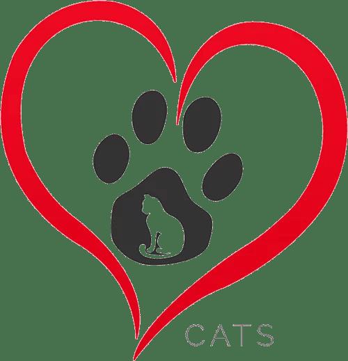 pet care cats
