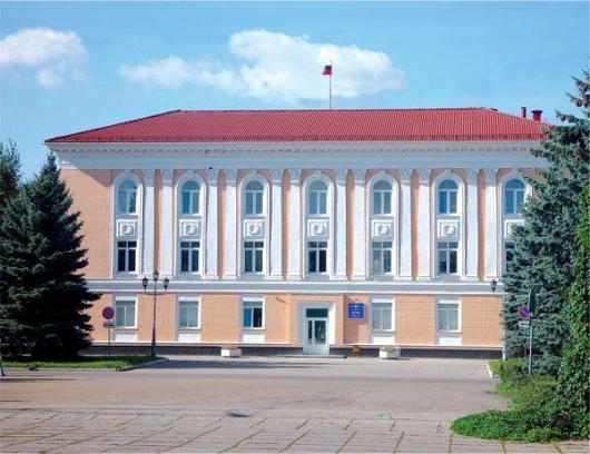 Губернатору нужен свой человек в Тольяттинской Думе