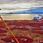GPS work in Labrador