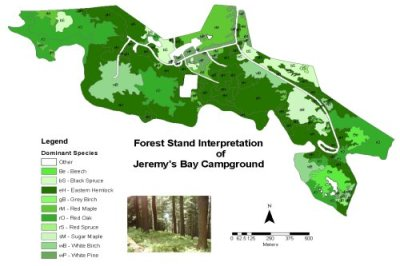 Spatial Database Modeling of forest stands in Kejimkujik National Park