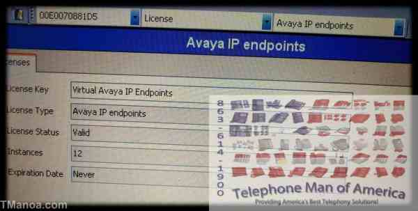 Avaya IP Office 500 Base Card with 12 Virtual IP Endpoints