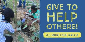Annual Giving Campaign