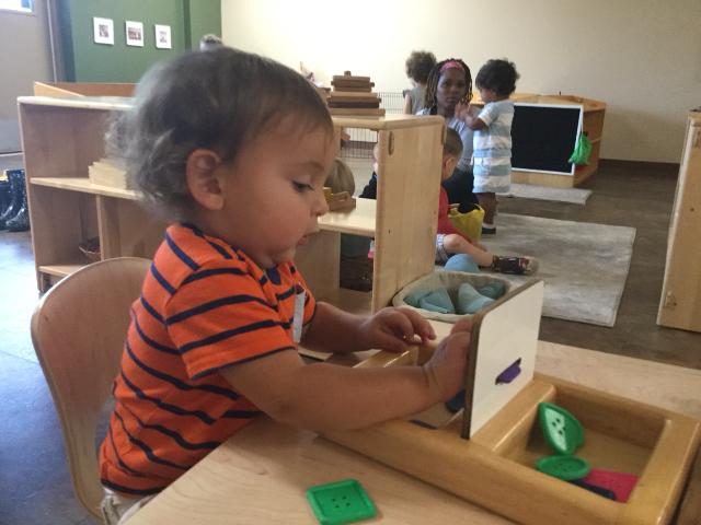 Toddler Inbucare (to put inside)