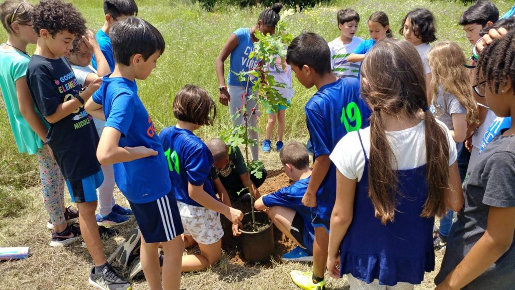 Upper Elementary Planting a Tree in the Wildscape