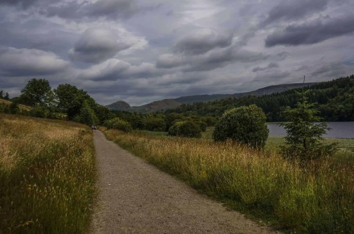 Easy walking from Milngavie to Drymen.