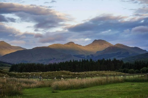 You'll enjoy the beautiful Highland's scenery much more without midges eating you alive!