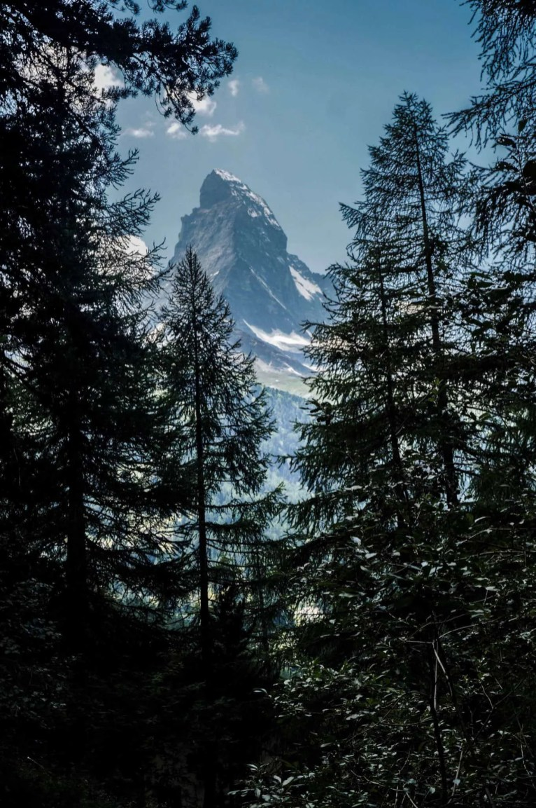 The Matterhorn dominates the scenery on the last day of your walk.