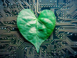Инженеры проектируют «дерево-на-чипе»: микрожидкостное устройство генерирувавшее пассивную гидравлическую мощность