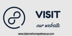 Visit our website