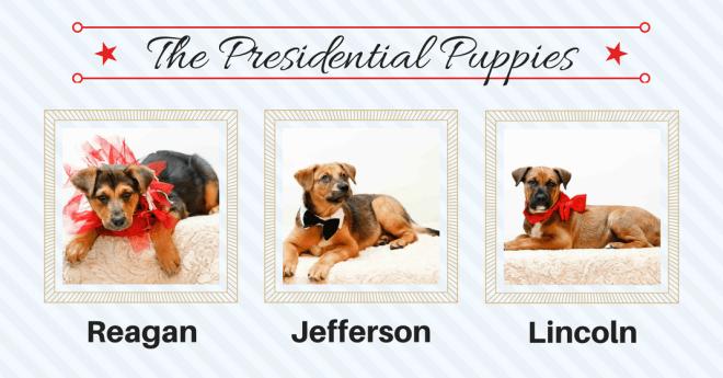PresidentialPups
