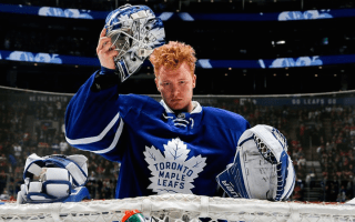 Hurricanes interested in Maple Leafs' Andersen