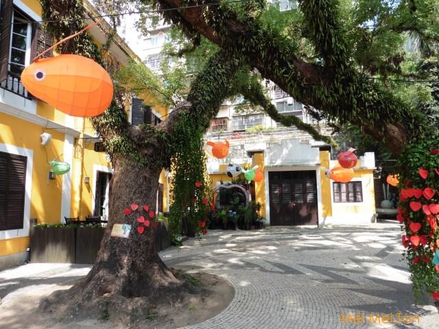 Travel-Macao-Santa Casa da Misericordia Albergue-Yard-20180210