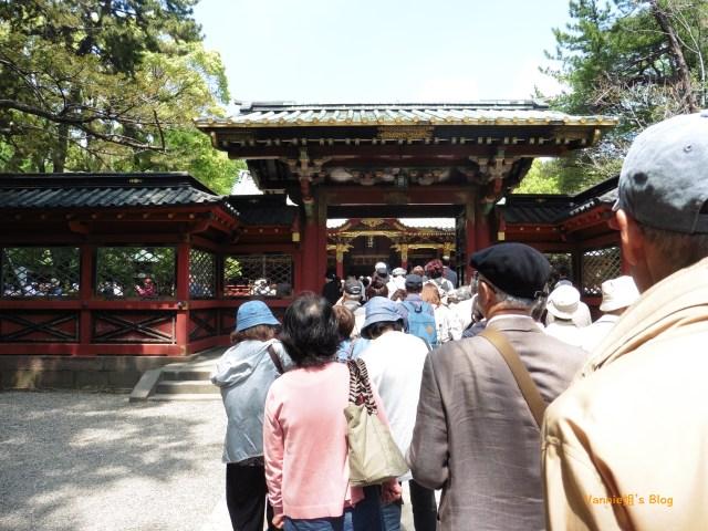 在 根津神社 唐門外,跟日本人一起排隊等候參拜