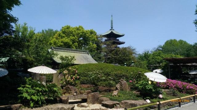 Tokyo-Ueno-Toshogu Shrine-Japanese Garden-20180420