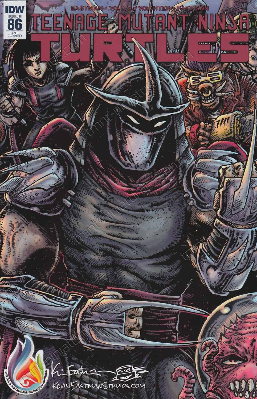 Teenage Mutant Ninja Turtles #80 Comics /& Ponies Variant IDW TMNT