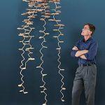 Aluminiumgjutningar av myrkolonier avslöjar insektsarkitektur