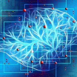 Amazon Launches Machine Learning Product in Healthcare