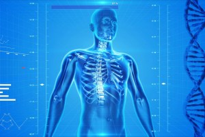 Discovery of Enhanced Bone Growth Reveals New Treatments for Osteoporosis