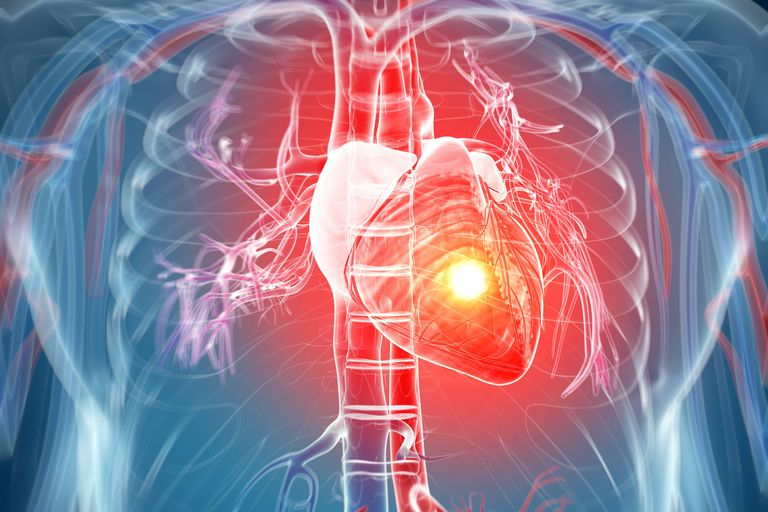 Using Protein Therapy to Accelerate Healing Post Heart Attack