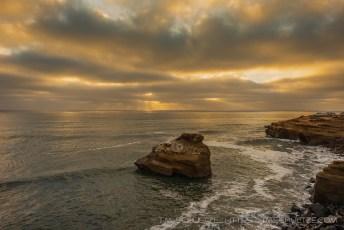Coastal Rays