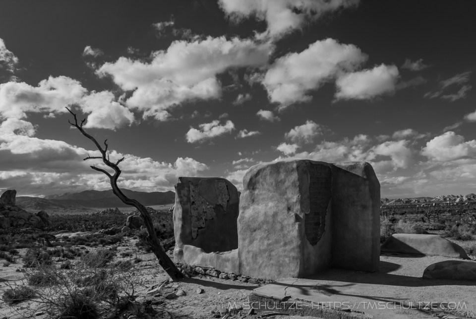 Treepost by T.M. Schultze