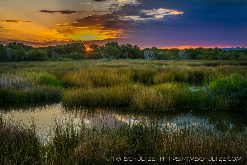 East Wetlands Sunrise by T.M. Schultze