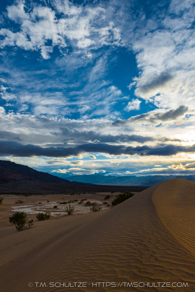 Late Afternoon Sand Dunes by T.M. Schultze