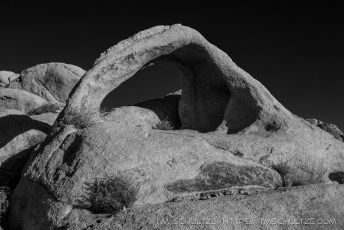 Coxcomb Arch, Black and White