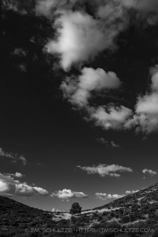 Sentinel's Expanse by T.M. Schultze