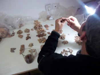 Peretz Reuven sorting pottery at the lab