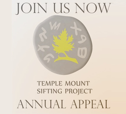 TMSP annual appeal