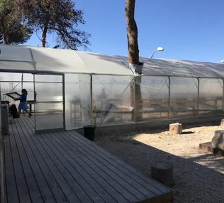 The sifting greenhouse