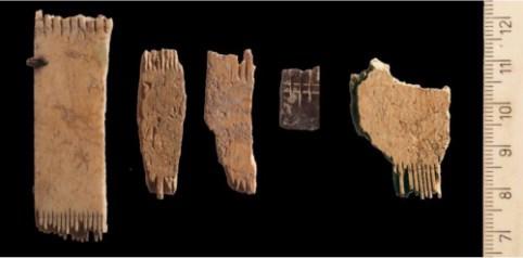מבחר מסרקי שיער עשויים עצם שנמצאו בפרויקט סינון העפר מהר הבית