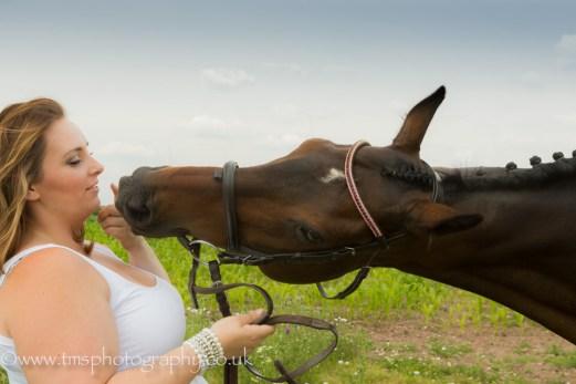 equine photography-3