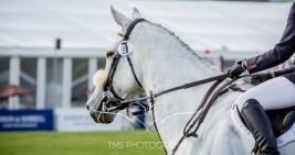 Chatsworth Horse Trials 2015-147